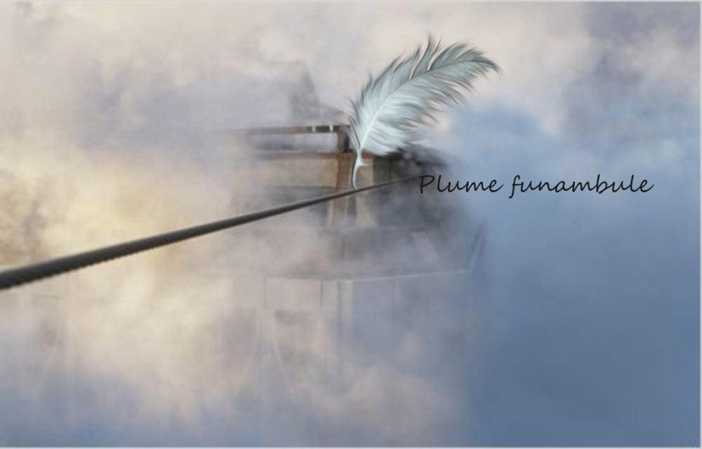Plume funambule - S Amigo Soulet Galerie 21