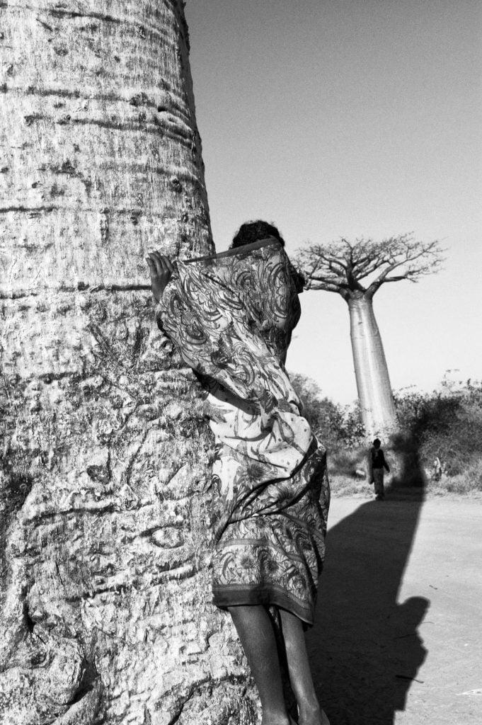 Série-Baobabs-Camouflage--Pierrot-Men-Galerie-21